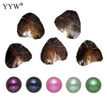 YYW Accessories DIY Pearl 5PCs/Lot Mixed Colors Freshwater Love Wish Pearl Oyster One Shell Oyster with One Pearl Oysters Gifts