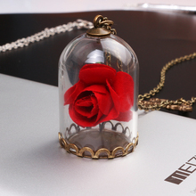 Buy Beauty Beast Necklace Vintage Enchanted Rose Terrarium Bottle Mirror Charm Necklaces Pendants women jewelry for $1.14 in AliExpress store
