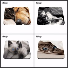 High Quality New square Blue Eye cat Rubber Soft Gaming Mouse Games Black Mouse pad 18*22cm and 25*29cm And 25*20cm