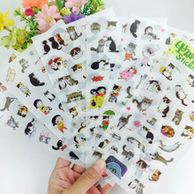 6sheets/set laptop sticker cute black and white cat photo album decorative stickers Creative transparent PVC stickers(China)