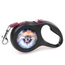 Professional Retractable Dog Leash with Durable Thick 10/16ft Nylon Rope Best Pet Dog Leash Elegant Packaging Great for the Gift