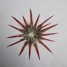 50 root sell DIY feather craft accessory ornament Feather red golden pheasant feather 10-15cm 4-6 inch(China)