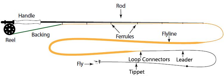 fly-fishing-rod