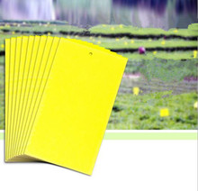 20-Pack Dual-sided Yellow Sticky Traps for Fungus Gnat, Whitefly, Aphid, Leaf Miner, Other Flying Insects, Bugs (10x6 Inches, 20(China)