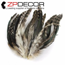 ZPDECOR 200pcs/lot 15-20cm(6-8inch) Hand Select Beautiful Unique Natural and Bronze Mix Chinchil Rooster Hair Extension Feathers(China)