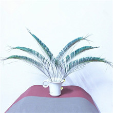 32pcs/Lot SWORD PEACOCK FERN FEATHERS 10-12 Inches 25-30cm Left or Right side Freeshipping!