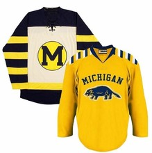 MICHIGAN WOLVERINES Hockey Jersey Embroidery Stitched Customize any number and name Jerseys(China)