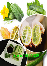 GGG A Professional Pack (100 pieces / lot) White Cucumber seeds Fruits Cucumber Seeds Green Vegetable Seeds(China)