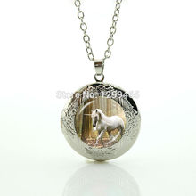 Hottest animal jewelry art picture glass dome locket pendant morocco fashion jewelry Unicorn leisure series essential horse N981