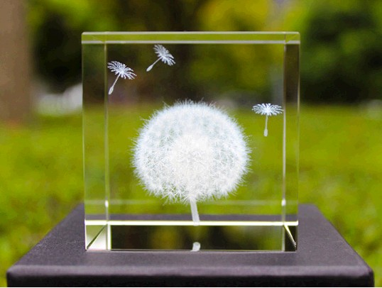 Dandelion specimen plant cube creative birthday gift items to send his girlfriend to get married<br>
