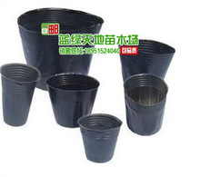 Free shipping 50 pcs plastic container Nursery Pots Seedling-raising Pan Nutrition cup Size 21cm * 17cm Garden Supplies(China)