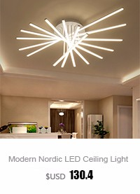 Living Room Ceiling Lamp (4)