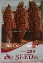 Special Price!!! 30 Seeds - Chinese Gaoliang Sorghum for Grain Seeds (vc0018)(China)