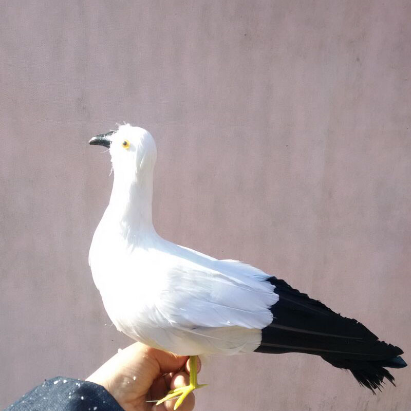 about 30x20cm white feathers seagull bird with black tail,Handmade model prop,home decoration toy gift w3953<br>