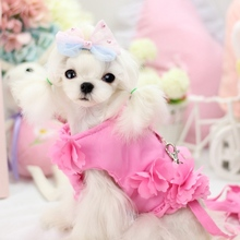 Princess Down Jacket Dog Harness With Leash Set Floral Winter Warm Coat Vest Lead Pet Goods For Puppies Animals Chihuahua Yokie