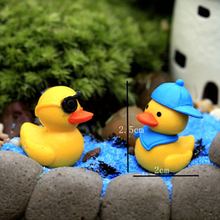 Random lovely Color PVC duck moss micro landscape decoration Toys OPP Bag Cute Landscaping 2cm Moss Eco Bottle