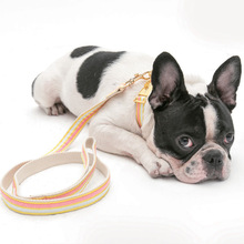 Direct manufacturers pet dog rope dog chain safety environmental Korea cashmere dog traction suit large wholesale