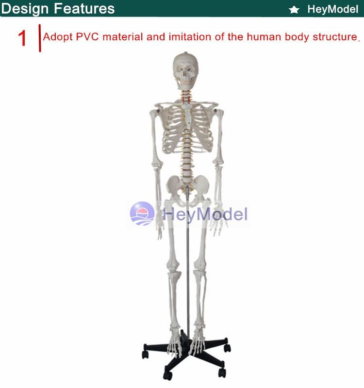 1.PVC_
