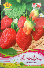 Rare Heirloom Organic Oblate Red Big Sweet Strawberry Seeds, Original Pack, 40 Seeds / Pack, Tasty Delicious Fruit #NF734