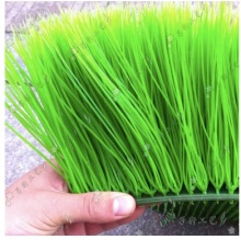 16 PCS 25cm*25cm artificial long dense wheat seedling grass boxwood mat green planting