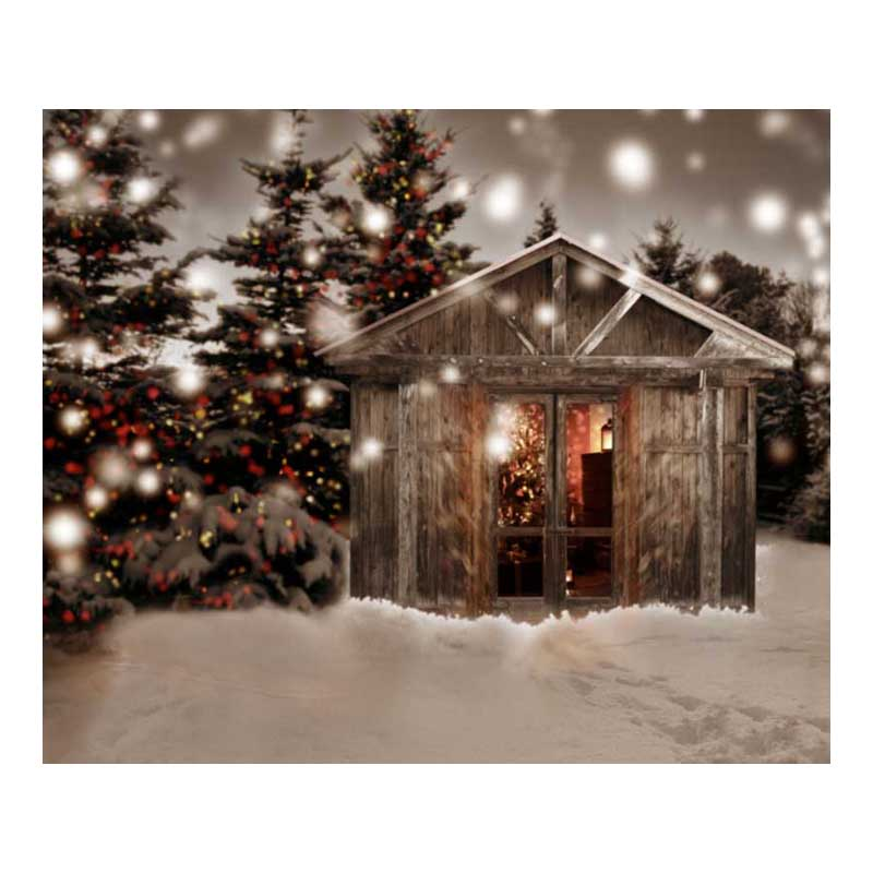 10X8ft  Thin vinyl Photography backdrops Studio Senior Backgrounds Digital print Christmas Backdrop ST-214<br>