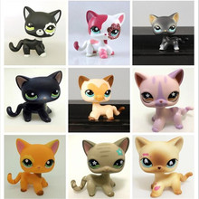 lps Collections CAT toys Short Hair Kitty Rare Old Styles White Pink Tabby Black pink kitten cute Animal Pet Shop Toys(China)