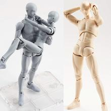 2017 Anime Body Kun / BODY CHAN Movable Action Figure Model Toys Anime Mannequin Bjd Art Sketch Draw Collectible Model Toy