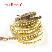 Hello Fish 5M 2835 600 SMD LED Strip 12V flexible120 led/m LED Tape, White/Warm white/ Red/ Green/ Blue With Tracking Number