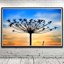 Plants Grass Dandelion Clouds Landscape Art Silk Poster Home Decor Pictures 12x19 15x24 19x30 22x35 Inch No Frame Free Shipping
