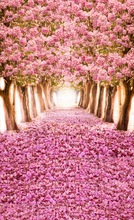 Spring vinyl cloth pink flower tree forest road photography backdrops for wedding princess kid photo studio portrait backgrounds(China)