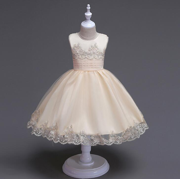 Infant Baby Girl Embroidered Short Sleeves Flower Girl Dress Princess Pageant Wedding Party Tutu Lace Flower Girl Dress<br>
