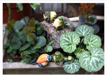 4pcs/set Creative birds Garden decoration resin cute artificial birds living room decoration resin bird craft garden sculpture(China)