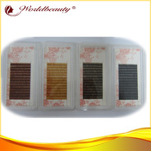 individual eyebrow extensions 10trays/lot mix length mix size mix colors hight quality PBT silk eyebrows extensions(China)