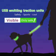 Pet Dog Collars and Leads LED Light Pet USB Charging Large Dogs Luminous Fluorescent Collars Harness Waterproof Luminous