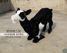 simulation cute black sheep 85x50cm model polyethylene&furs sheep model home decoration props ,model gift d874