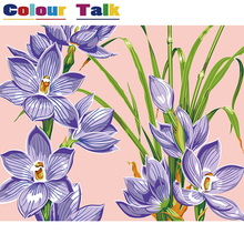 Oil Painting by Numbers Narcissus Flower Home Decoration for Living Room Handpainted Pictures Coloring by Numbers DIY Art P-0357
