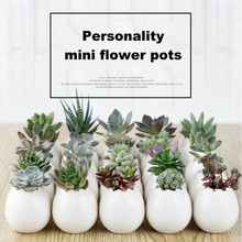 1PC Flower Pots Capita Skull Flower Pots Planters Desktop Accessories Home Decoration Modern Design Gifts White Ceramic Pots