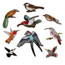 DIY craft supplies birds pattern Embroidered Sew Iron On Patches Badge Transfer Fabric Bag Clothes Applique Trim 1123(China)