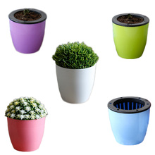 1pcs Automatic Watering Plastic Flower Pot Creative green planting flower pots + black inner blue + absorbent cotton rope(China)
