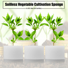 50pcs Soilless Hydroponic Sponges Transplanted Vegetable Cultivation System Soilless Planting Seedlings Gardening Tools(China)