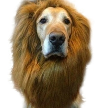 2017 Lovely Large Dogs Halloween Pet Apparel Cat Fancy Dress Up Clothes Lion Mane Wig H1(China)
