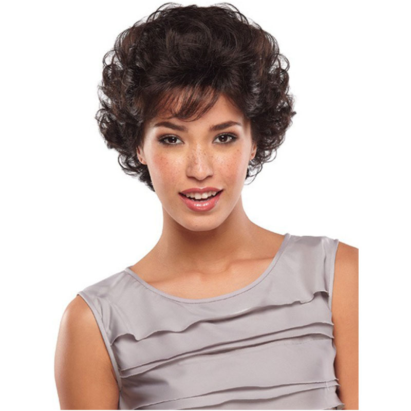 Free Shipping High Quality Short Wigs Wholesale Women Fluffy Curly Wigs Synthetic Hair Wigs<br><br>Aliexpress