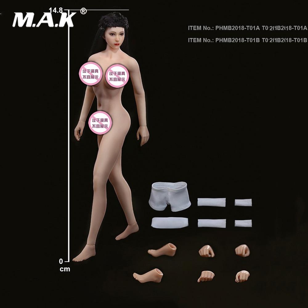 1//6 TBLeague PHMB2019-S33B Suntan Female Body Mid Bust Super-Flexible Seamless