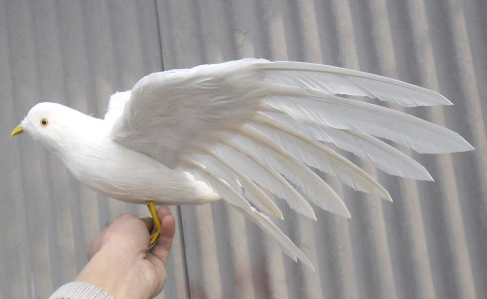 new simulation white pigeons toy lifelike wings seagull doll gift about 48x30cm<br>