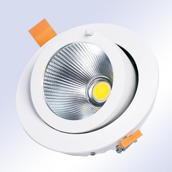 Free Shipping 15W/20W/30W LED Trunk Downlight  AC85-265V Adjustable recessed Super Bright Indoor Light cob led downlight<br><br>Aliexpress