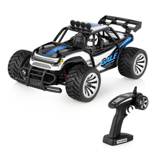 RC Car 1/16 Scale Radio Controlled Electric Desert Buggy Vehicle 2.4GHz 50M 2WD High Speed Electric Race Monster Car(China)