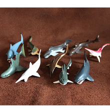 10pcs/set Simulation animal model toy whale marine animal scene Decoration  Cretaceous prehistoric shark pvc  figure