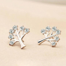 Wholesale Life tree stud earrings real 925 sterling silver fashion Zircon crystal earrings for women/girls 1pair/lot Top quality(China)