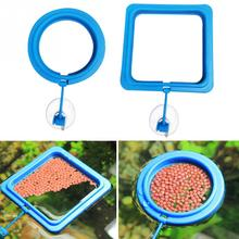 1pcs Aquarium Feeding Tool Feeding Fish in Ring Floating Feeding Ring Keep Food for Fish Square or Round for Your Choice(China)