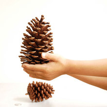4pcs Big S Christmas Tree Pine Cones Pinecone Xmas New Year Holiday Party Decoration Ornament For Home Parties Supplies